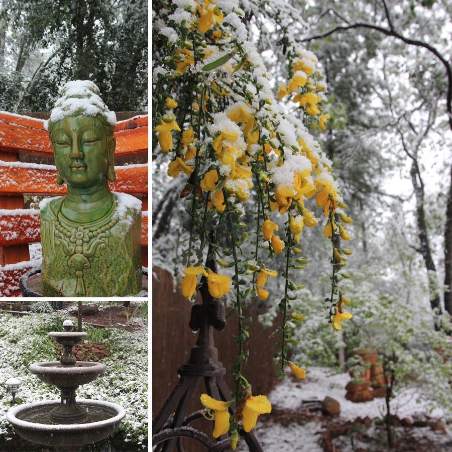 snow-in-april-3
