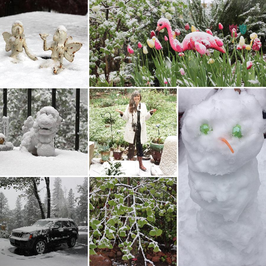 snow-in-april-4
