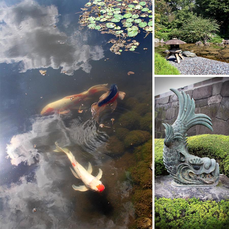 temple-fish