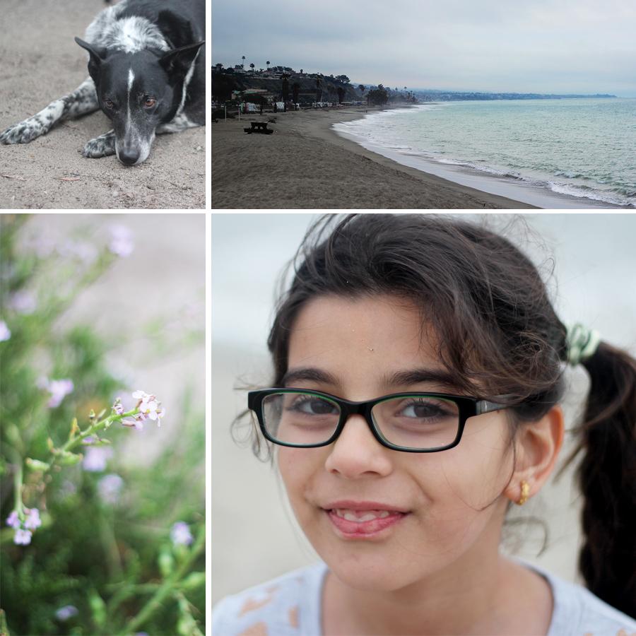 doheny-beach1