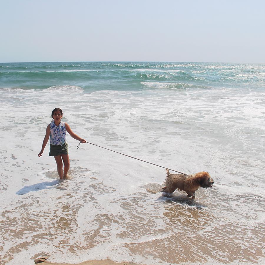 dog-beach5