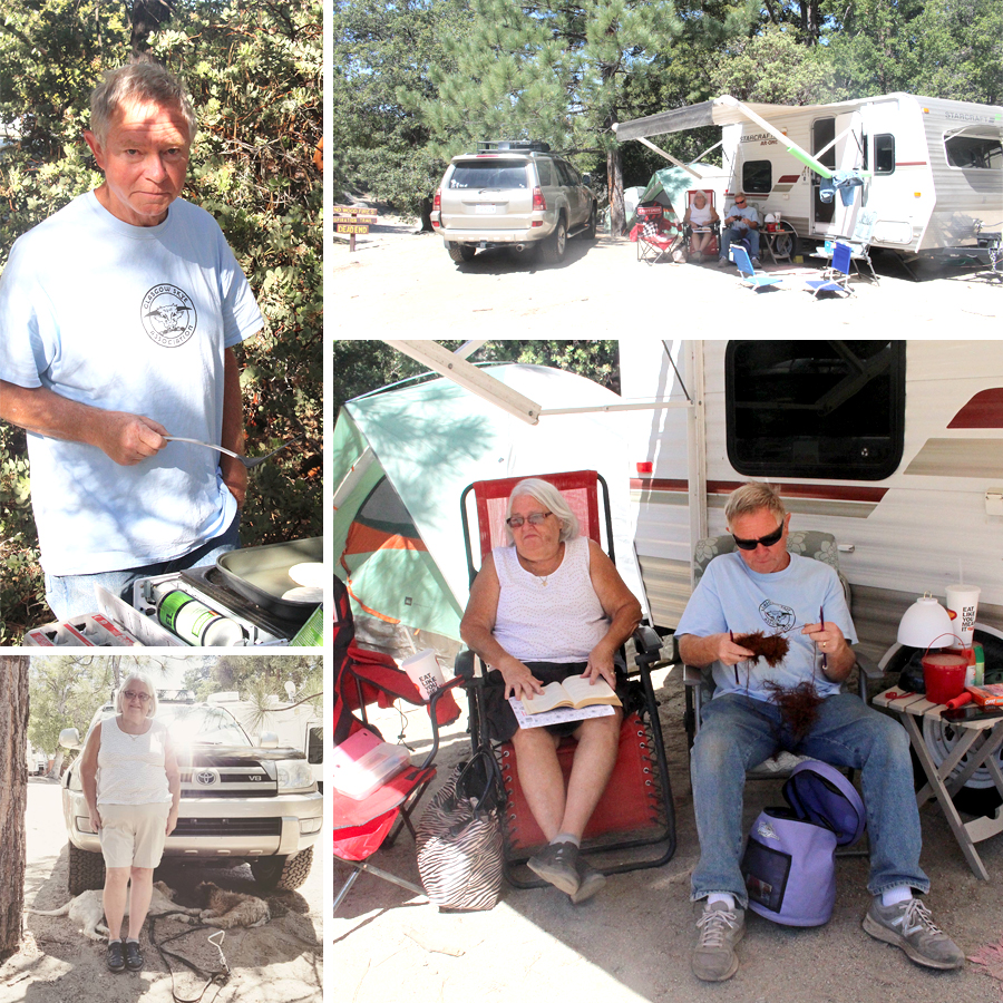 camping-with-dogs-8