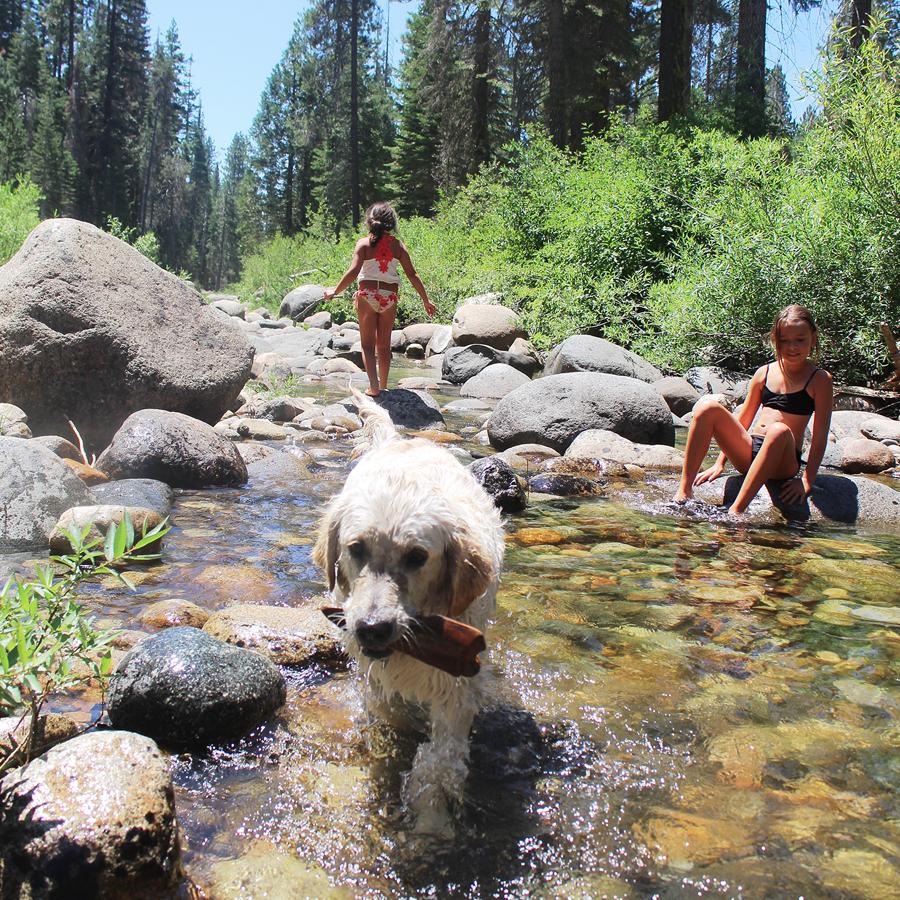cody-n-bug-n-joon-in-the-creek